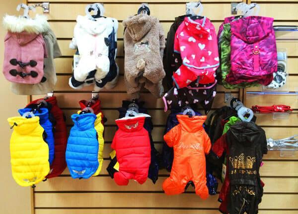 Витрина магазина с одеждой для собак