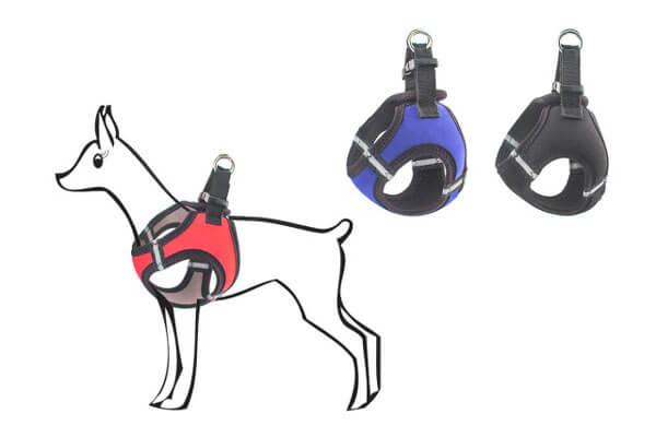 Шлейка для маленьких собак