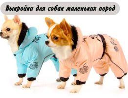 Выкройки для собак маленьких пород