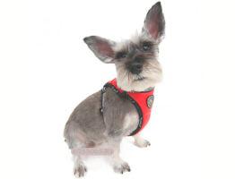 Шлейка для маленьких собак как сшить самому и выбрать готовую?